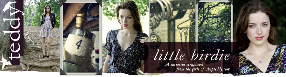 little birdie | shopteddy blog